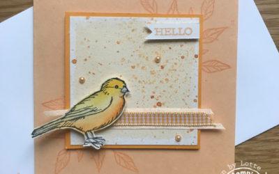 Free as a Bird met Water Painters – Koffie met Kaart Facebook live 27 mei